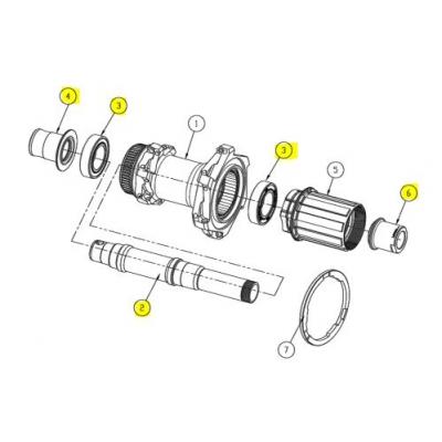 Giant SLR 1 Disc (2017) Rear Wheel service kit, 151A-AX2117-701