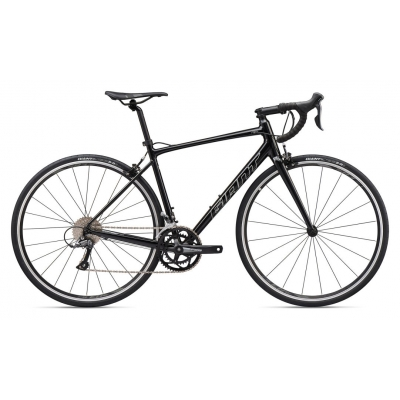 Giant Contend 2, Metallic Black 2020