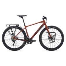 Giant ToughRoad SLR 1 2020