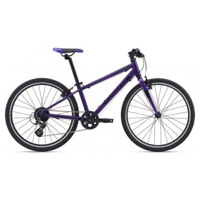 Giant ARX 24, Purple 2020