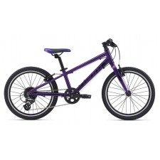 Giant ARX 20, Purple 2020