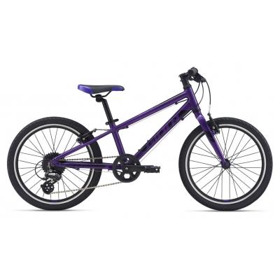 Giant ARX 20 Light Weight Kid's Bike, Purple 2020