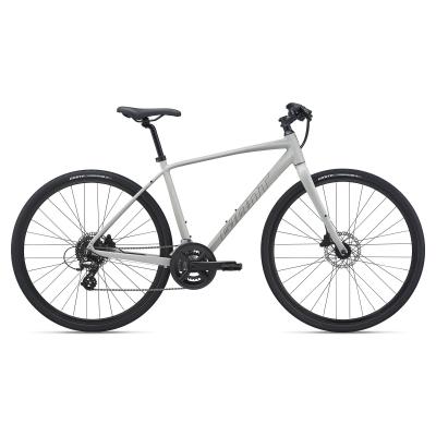 Giant Escape 2 Disc Hybrid Bike, Concrete 2021