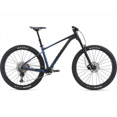 Giant Fathom 29 2 Mountain Bike 2021