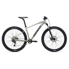 Giant Talon 1 Mountain Bike 2021