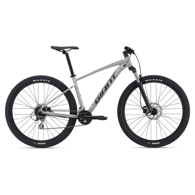 Giant Talon 29 2 Mountain Bike 2021