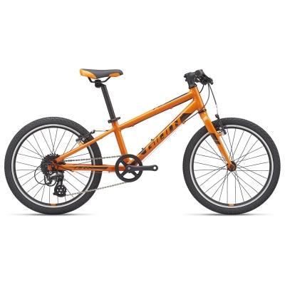Giant ARX 20 Light Weight Kid's Bike, Orange 2021