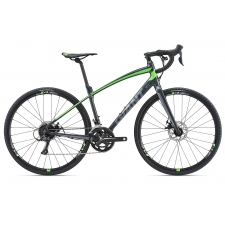 Giant AnyRoad 2 Gravel Bike 2018