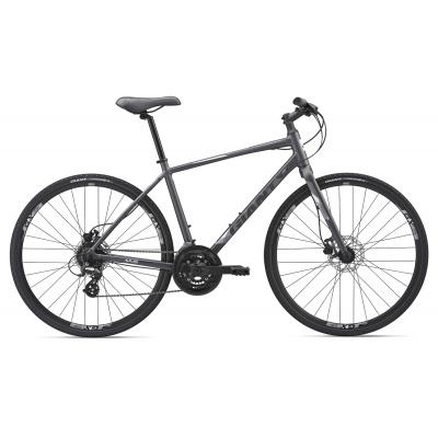 Giant Escape 2 Disc Hybrid Bike 2019