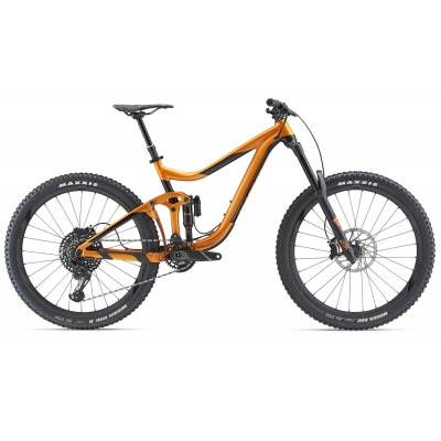 Giant Reign 1 Mountain Bike 2019