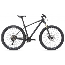 Giant Talon 29er 1 Mountain Bike 2019