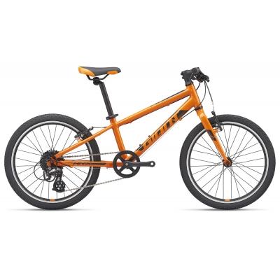 Giant ARX 20 Light Weight Kid's Bike, Orange 2019