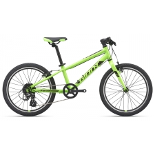Giant ARX 20 Light Weight Kid's Bike, Green 2019