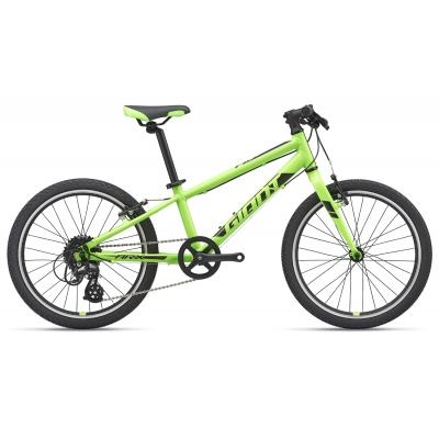 Giant ARX 20 Light Weight Kid's Bike, Green 2019