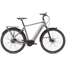 Giant DailyTour E+ 1 Electric Bike 2019