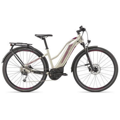 Liv/Giant Amiti E+ 1 Women's All Terrain Electric Hybrid Bike 2019