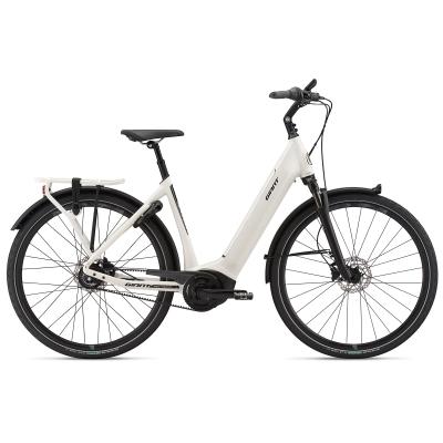 Giant DailyTour E+ 1 Low Step Thru Electric Bike 2019