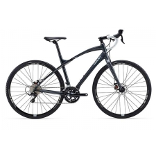 Giant 2015 Anyroad 1 Front Fork, 91215G90149B1