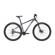 Cannondale Trail 6 Mountain Bike, Slate Grey 2021