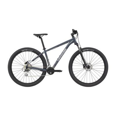 Cannondale Trail 6 Mountain Bike, Slate Grey 2021