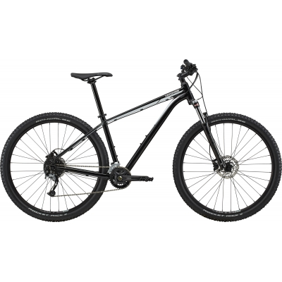 Cannondale Trail 6 CE Mountain Bike (European Spec), Silver 2020