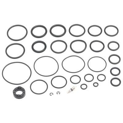 Cannondale 2Spring Universal 100Hr Service Seal Kit