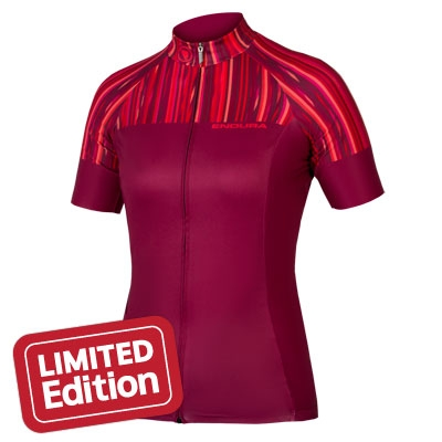 Endura Women's Pinstripe Short Sleeve Jersey, Limited Edition