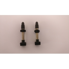 Giant Tubeless Valves (Pair) - Silver