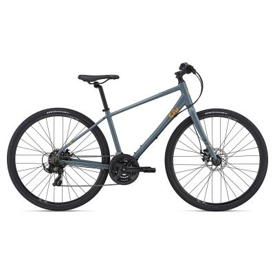 Liv Alight 3 Disc Women's Hybrid Bike 2021