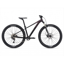 Liv Tempt 1 Women's Mountain Bike 2021