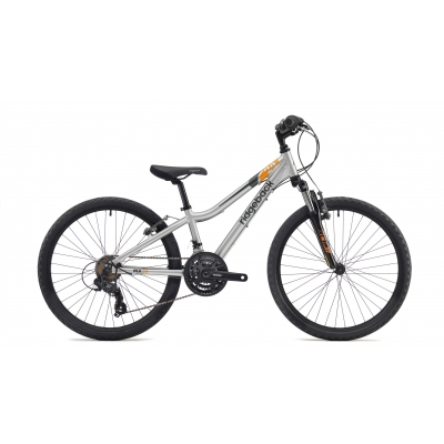 Ridgeback MX24 24in Boy's Bike (Silver) 2018