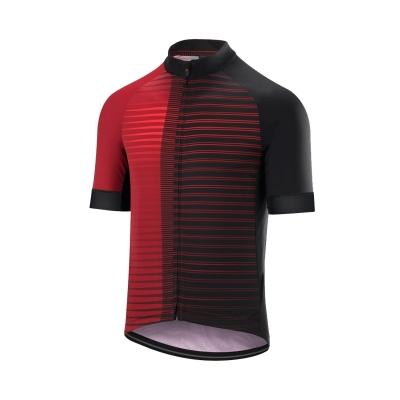 Altura Icon Horizon Short Sleeved Jersey